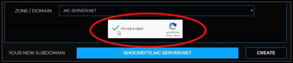 Shockbyte subdomain  Name